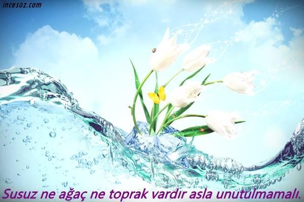 Su ile İlgili Sözler