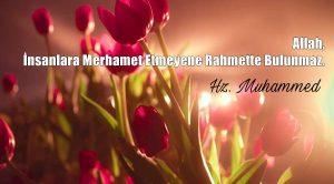 Rahmet ile İlgili Sözler