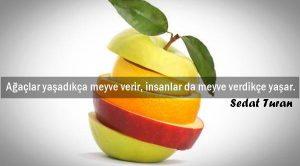 Meyve ile İlgili Sözler