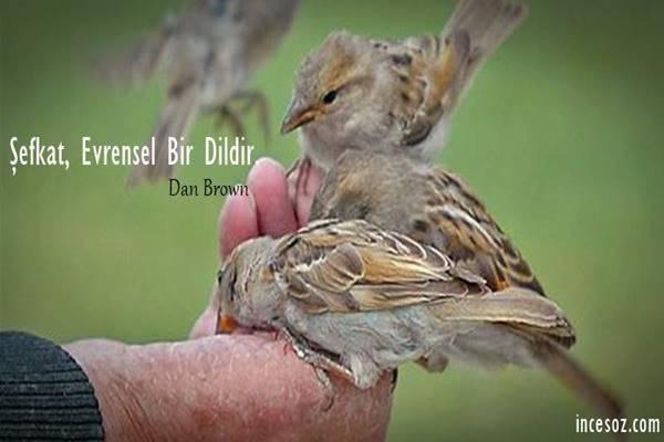 Şefkat ile İlgili Sözler