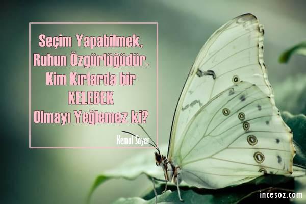 Kelebek ile İlgili Sözler