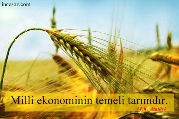 Tarım ile İlgili Sözler